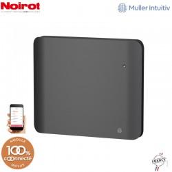 Radiateur Fonte NOIROT DOOK 1000W horizontal gris anthracite connecté NEN3363TCHS