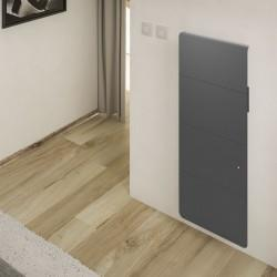 Radiateur Fonte NOIROT - AXIOM Smart ECOControl gris anthracite