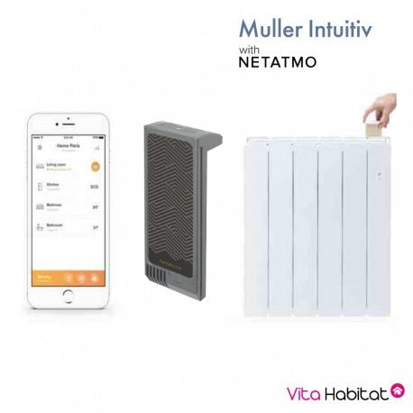 Module Muller Intuitiv with Netatmo Gris - CAMPA - NEN9241AAHS