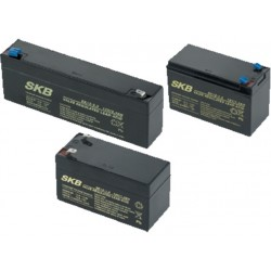 BB020 Batterie au plomb 12V 2A CAME 846XG-0020