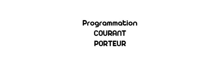 Courant Porteur